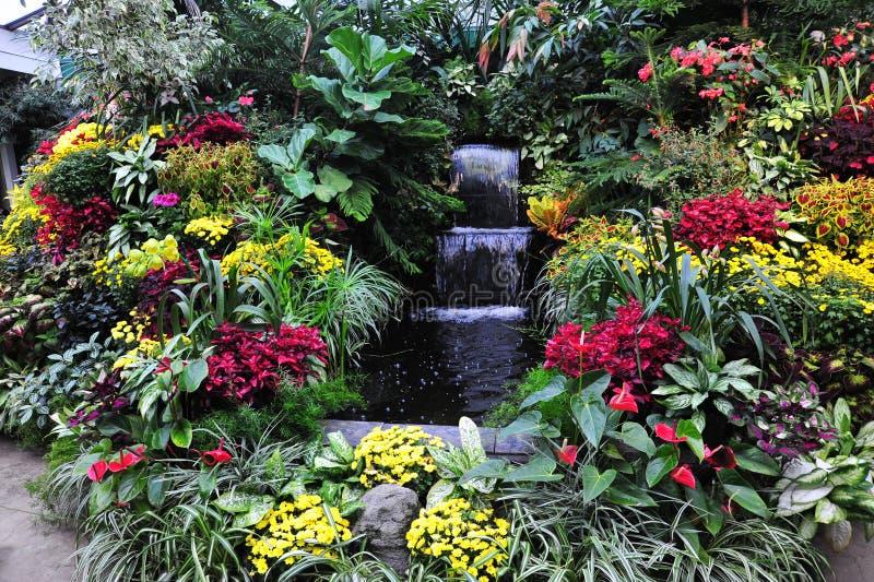 Flores e cachoeira fotografia de stock