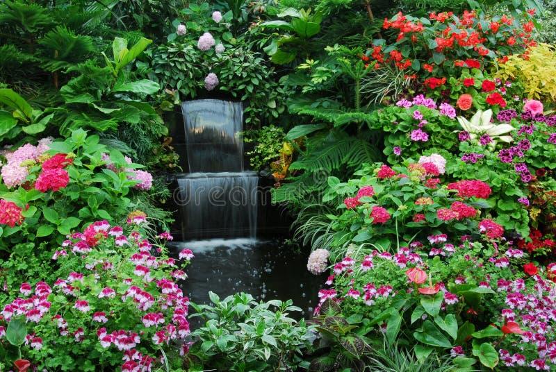 Flores e cachoeira em garde foto de stock royalty free