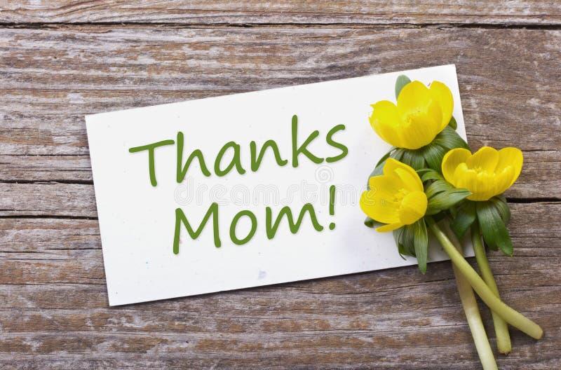 Download Agradece à mamã imagem de stock. Imagem de font, escreva - 29839495