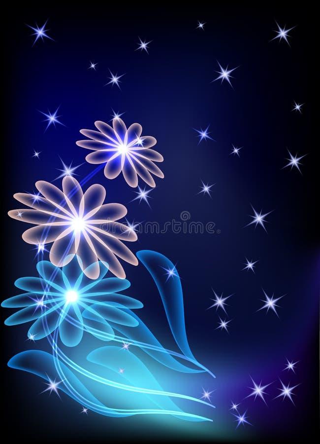 Flores e estrelas transparentes ilustração royalty free