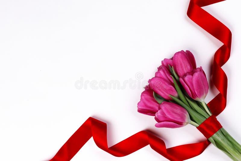 Flores e fitas brancas das chicórias frisadas fotografia de stock royalty free