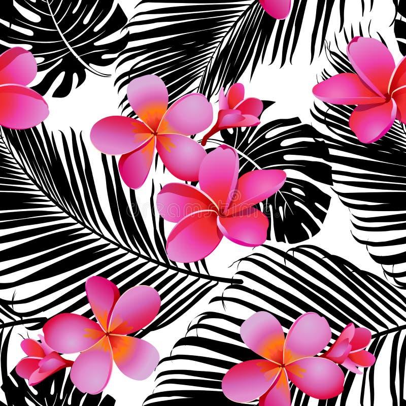 Flores e folhas corais tropicais no fundo preto e branco seamless Vetor ilustração royalty free