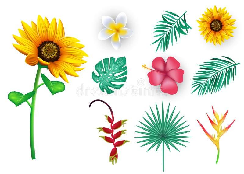 Flores e folhas tropicais, 3D vetor floral realístico Mesh Elements para a temporada de verão ilustração do vetor