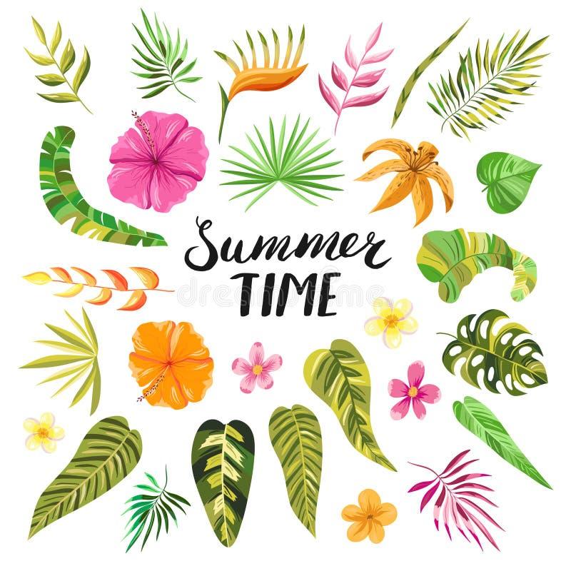 Flores e folhas tropicais do verão do vetor ilustração stock