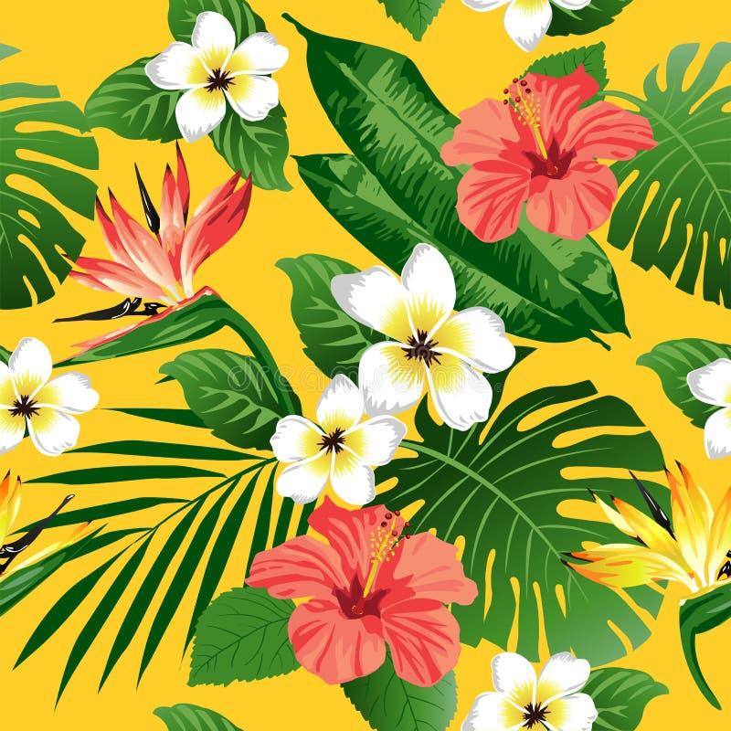 Flores e folhas tropicais no fundo ilustração stock