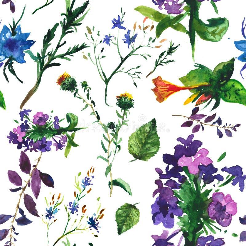 Flores e folhas tropicais Teste padrão sem emenda ilustração royalty free