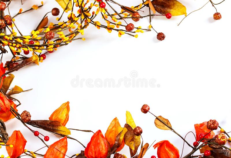 Flores e frutos secos das folhas de Autumn Background da queda fotografia de stock