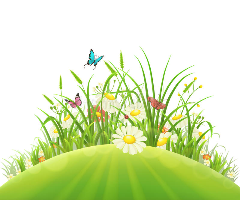 Flores e grama da mola ilustração royalty free
