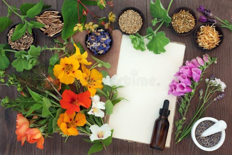 Flores e hierbas de Naturopathic imagen de archivo libre de regalías