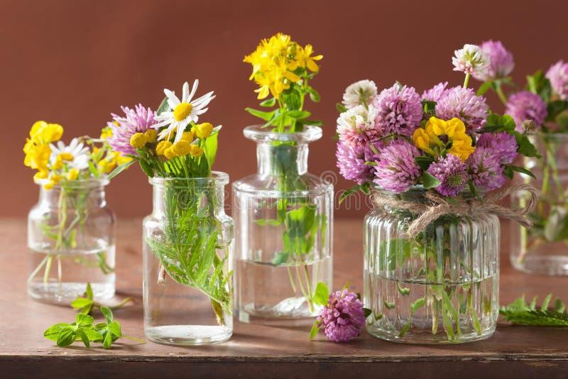 Flores e hierbas médicas coloridas en botellas imágenes de archivo libres de regalías