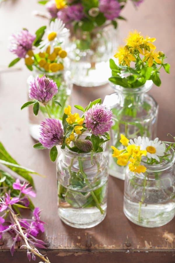 Flores e hierbas médicas coloridas en botellas imagenes de archivo