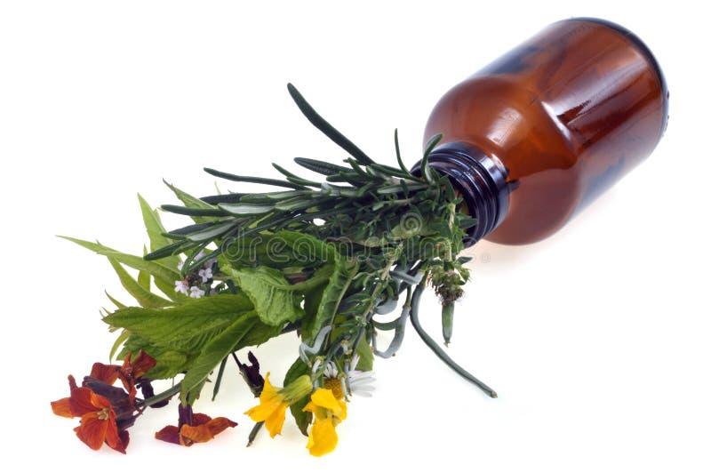 Flores e hierbas que salen de una botella de cristal fotografía de archivo