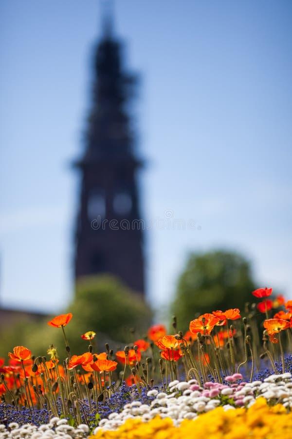Flores e iglesia en Friburgo, Alemania fotografía de archivo