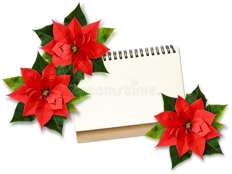 Flores e nota da poinsétia do Natal fotografia de stock royalty free