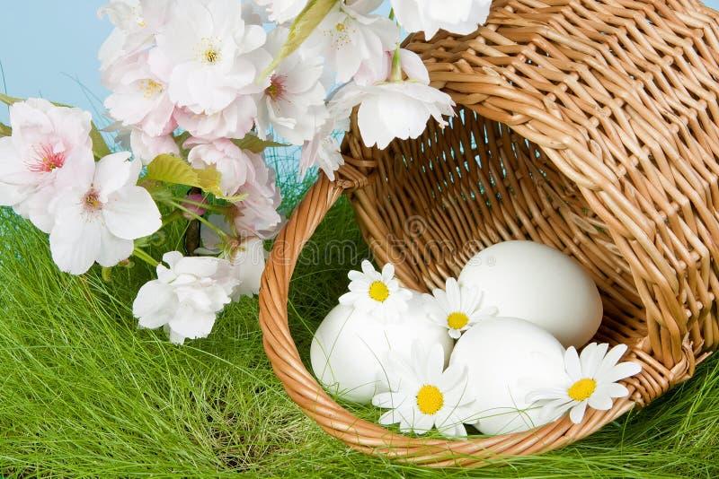 Flores e ovos de Easter imagens de stock