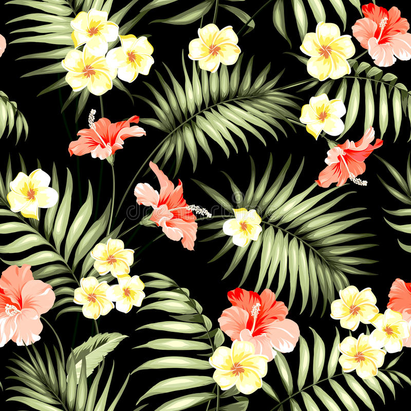 Flores e palmas tropicais da selva ilustração royalty free