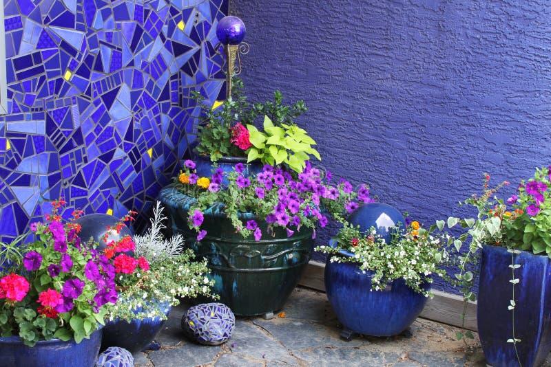 Flores e potenciômetros de flor fotografia de stock
