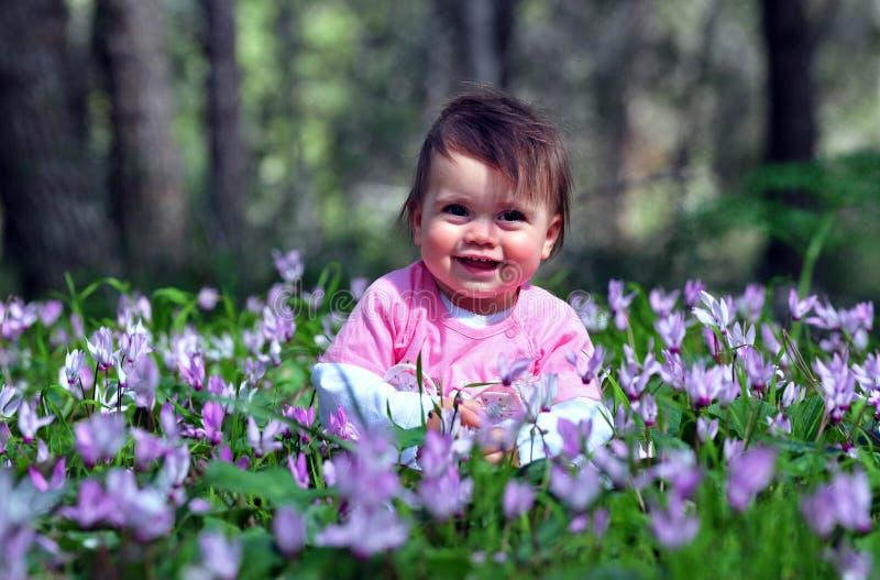 Flores e tempo de mola fotografia de stock
