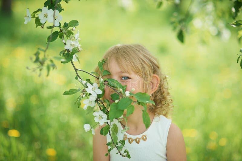 flores el oler de la muchacha del manzanar Jardín con los árboles florecientes fotografía de archivo libre de regalías