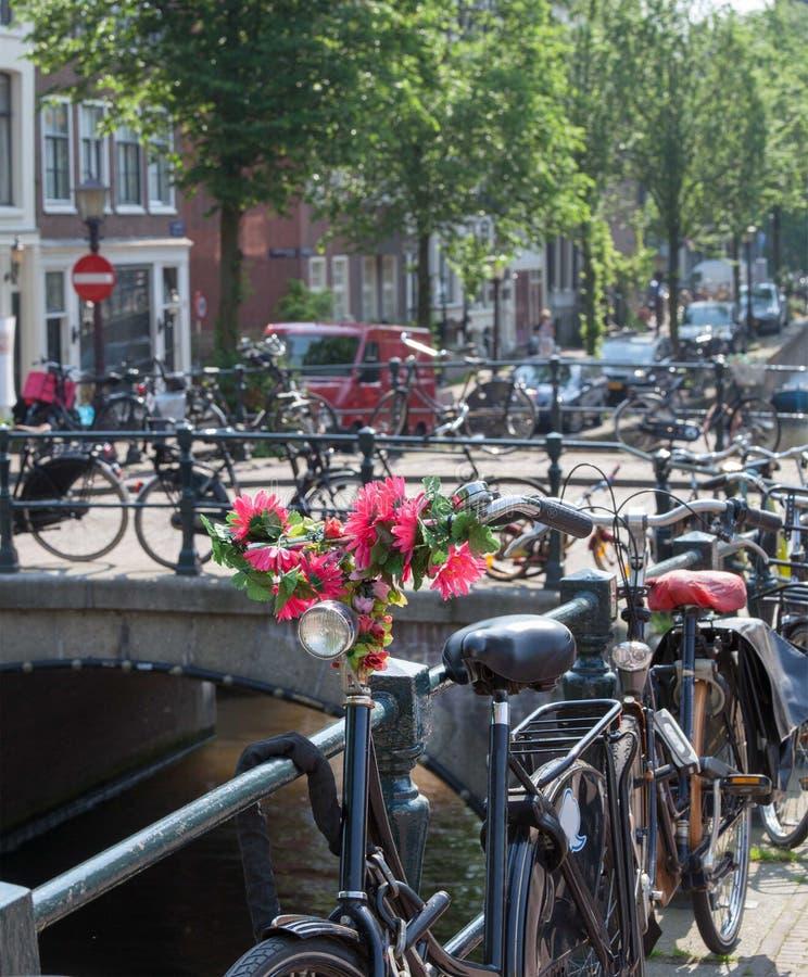 Flores em Amsterdão imagens de stock royalty free