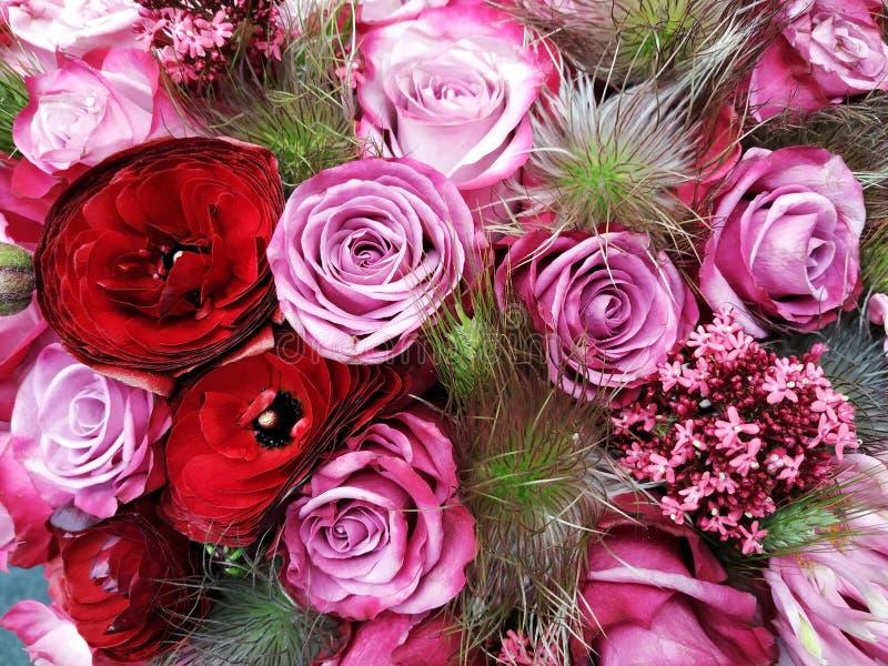 Flores em Floraart em Zagreb, Cro?cia fotos de stock royalty free