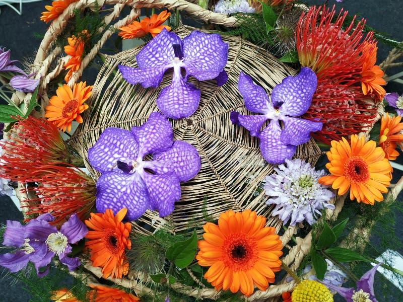 Flores em Floraart em Zagreb, Cro?cia foto de stock