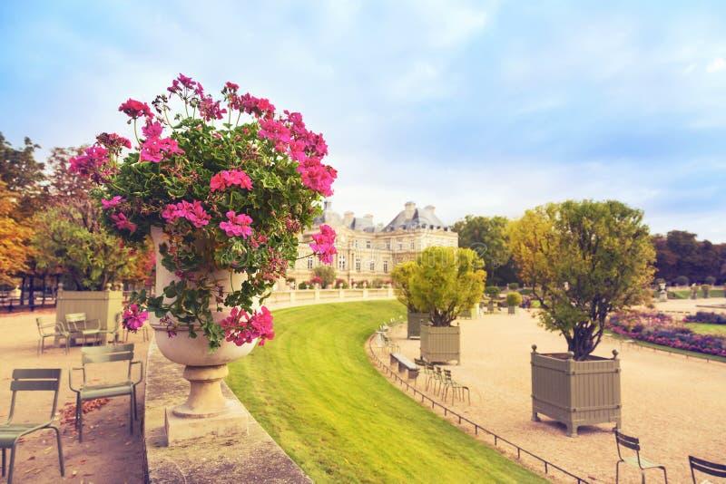 Flores em jardins de Luxemburgo, Paris, França fotografia de stock royalty free