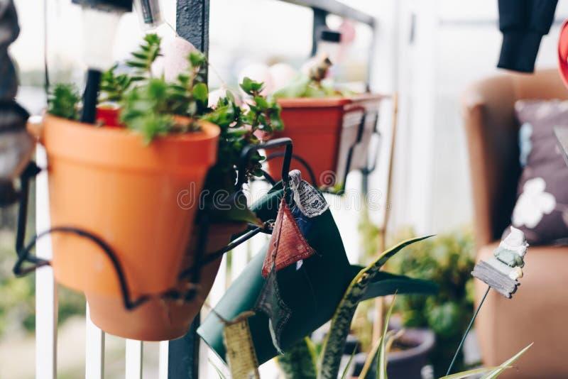 Flores em um jardim urbano fotos de stock royalty free