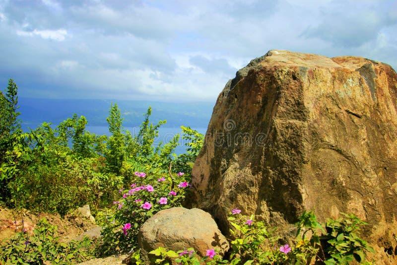 Flores en borde volcánico fotografía de archivo libre de regalías