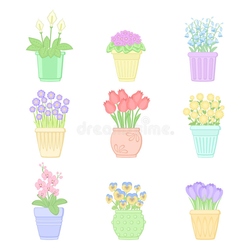 Flores en crisoles libre illustration