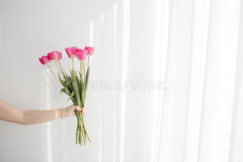 Flores en el fondo blanco con la luz hermosa fotografía de archivo libre de regalías