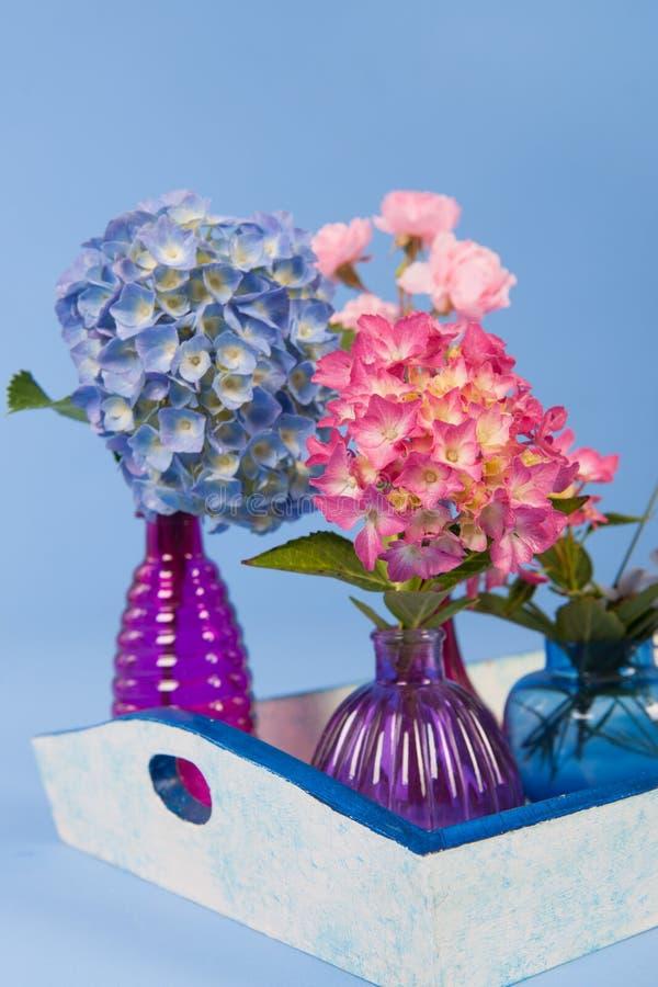 Flores en fondo azul foto de archivo