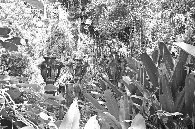 Flores en jardín surrealista botánico imagen de archivo