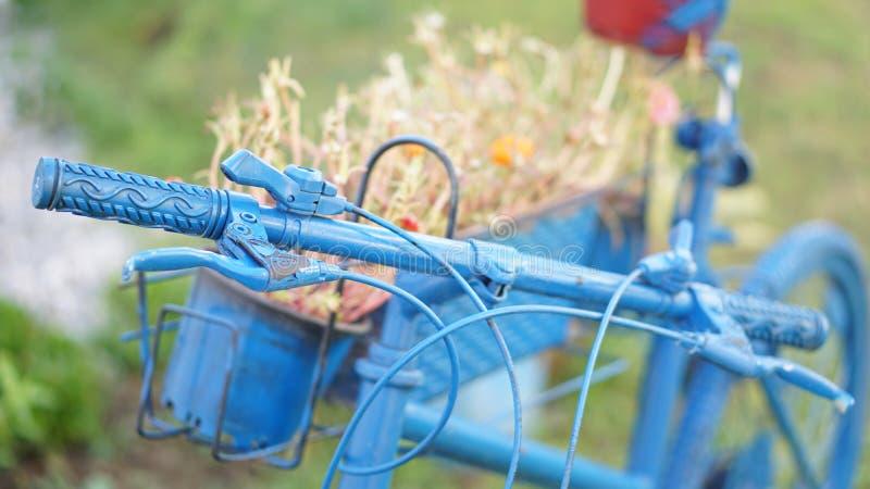 Flores en la bicicleta azul que se coloca en el jardín imagenes de archivo