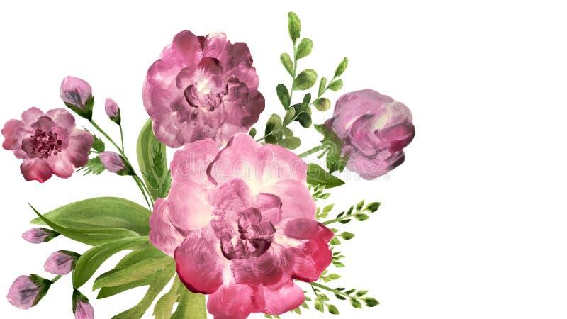 Flores en la composición, visión superior, aislada en el fondo blanco peonies foto de archivo libre de regalías