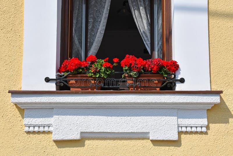 Flores en la ventana de una casa vieja fotografía de archivo libre de regalías