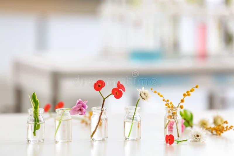 Flores en las botellas de cristal en la tabla foto de archivo