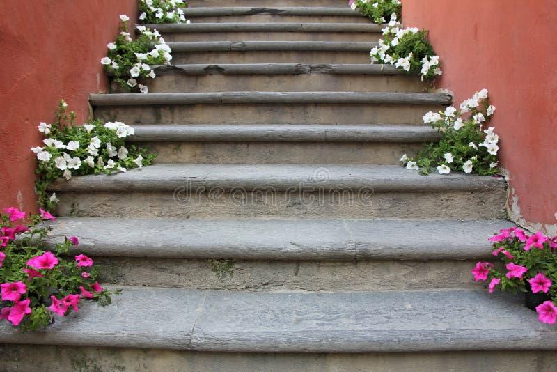 Flores en las escaleras imagen de archivo
