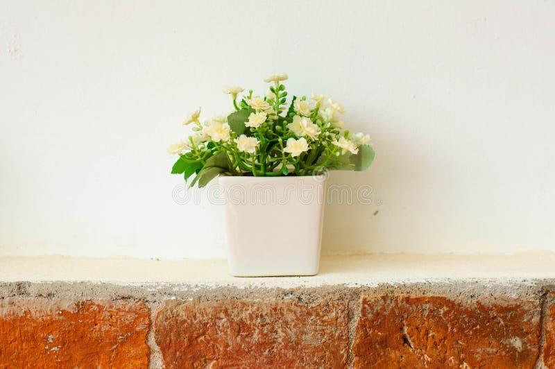 Flores en un pote imagenes de archivo