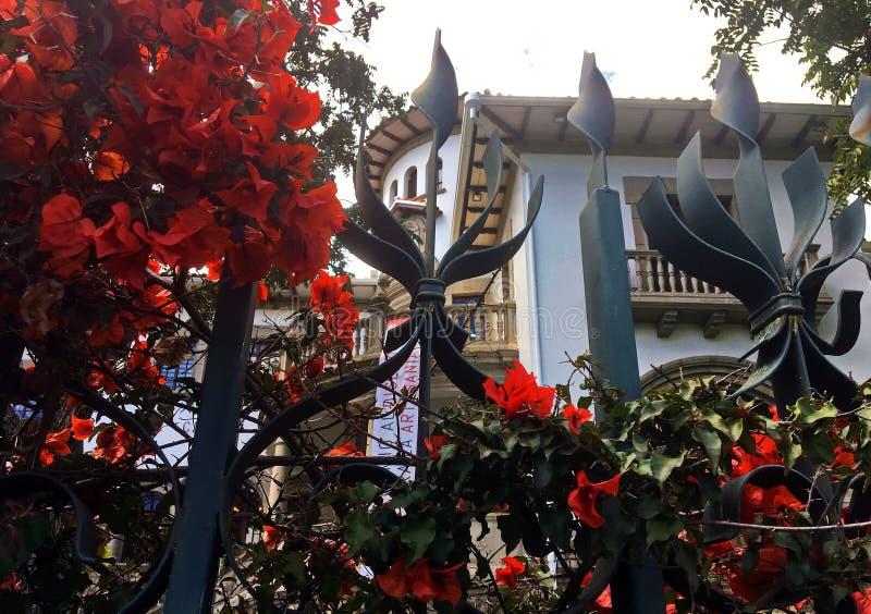 Flores en una cerca del hierro delante del museo de CIDAP en Cuenca Ecuador imagen de archivo