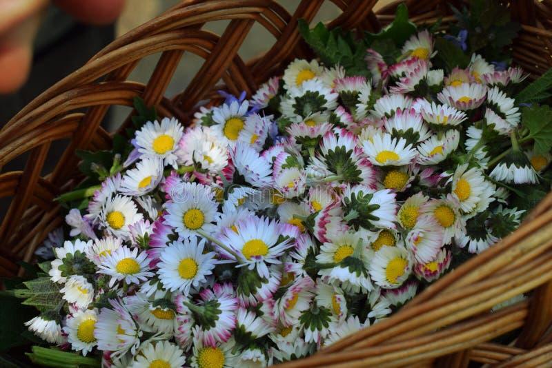 Flores en una cesta foto de archivo libre de regalías