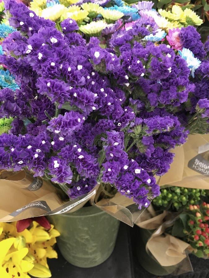 Flores en una tienda fotografía de archivo libre de regalías