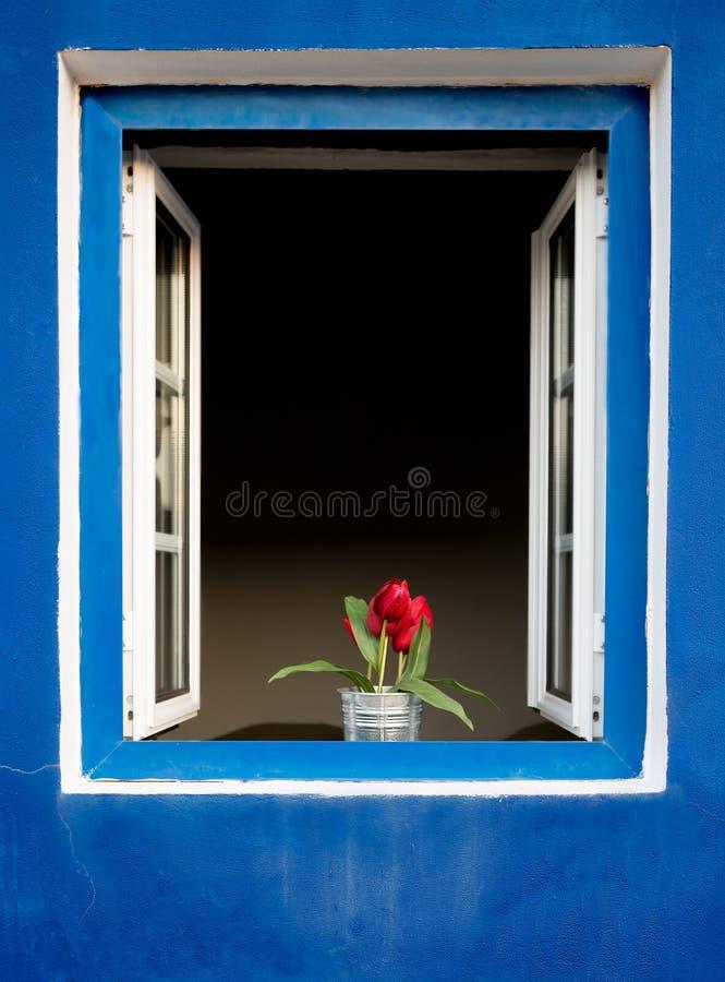 Flores en una ventana foto de archivo libre de regalías