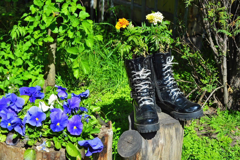 flores en zapatos imagen de archivo libre de regalías
