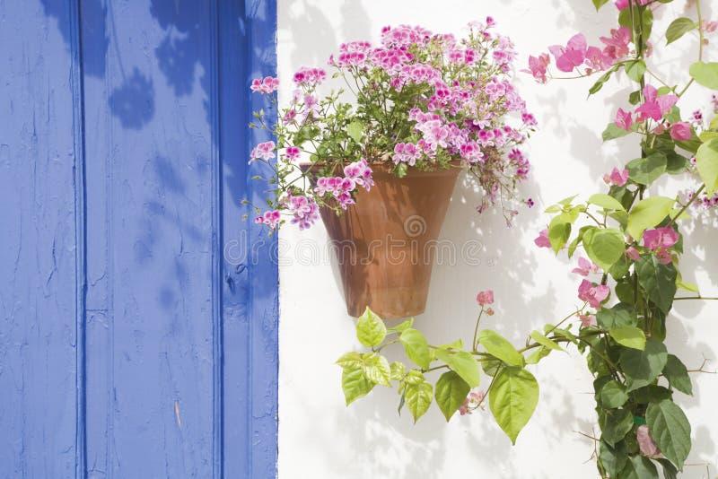Flores espanholas imagens de stock