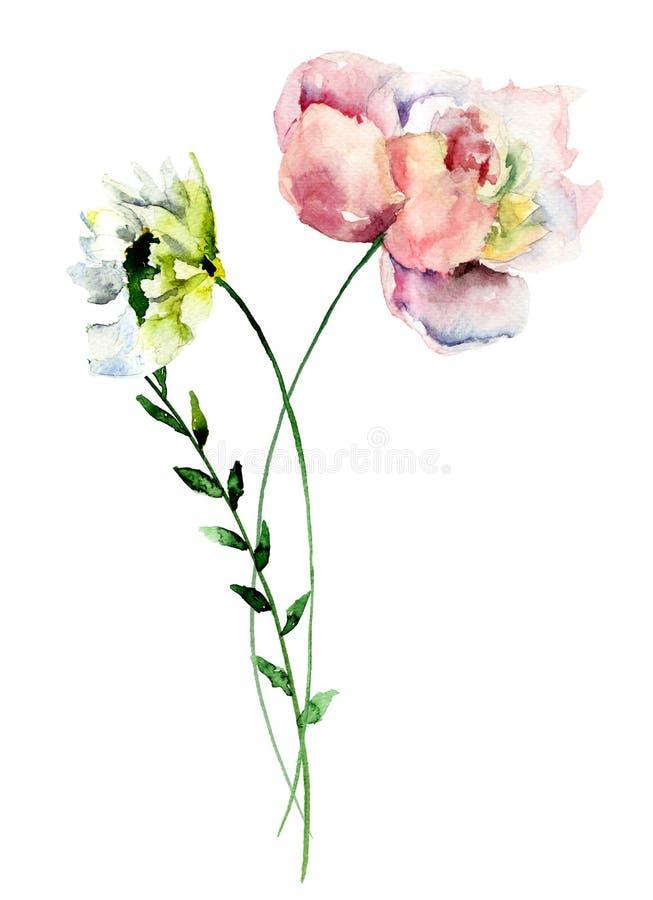 Flores estilizadas de Gerber y de la peonía libre illustration