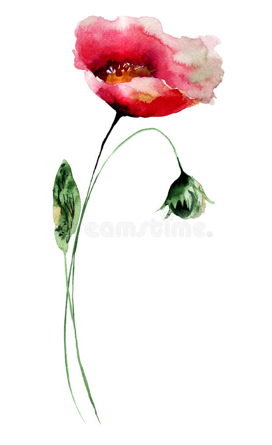 Flores estilizados da papoila ilustração royalty free