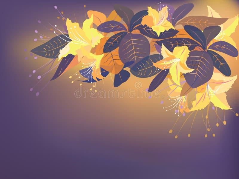 Flores exóticas alaranjadas ilustração stock