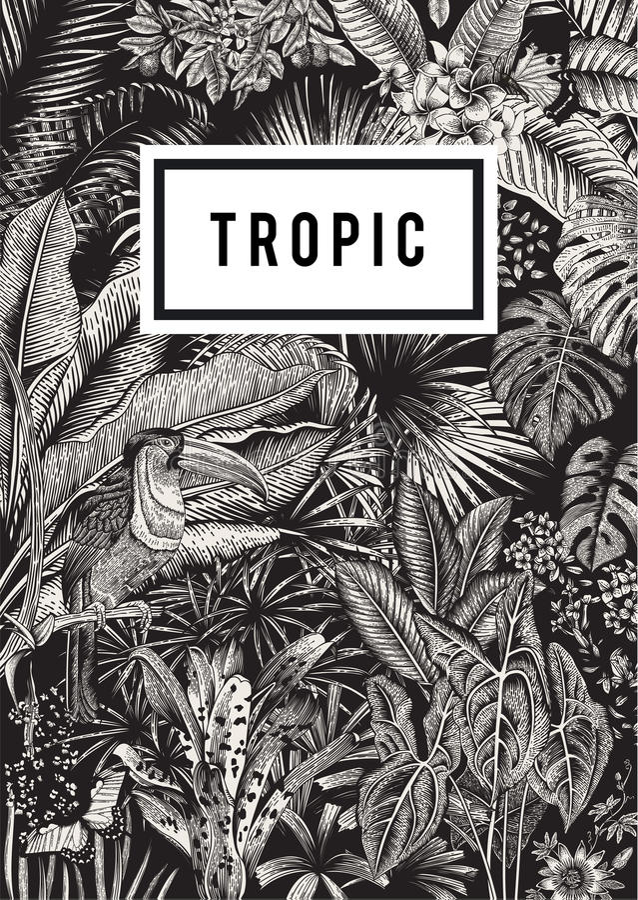 Flores exóticas, palma, pássaro, borboleta ilustração do vetor