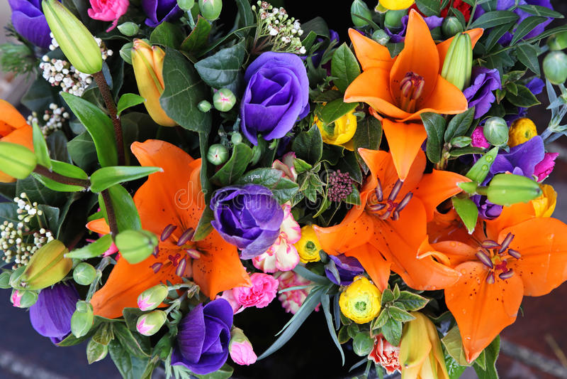 Flores extravagantes imagens de stock royalty free